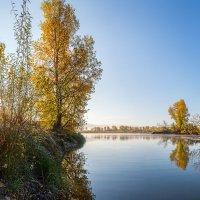 Утро на реке :: Евгений Герасименко