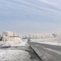 Я еду в даль дорогой сельской, Прощай посёлок Светлосельский... :: Анатолий Клепешнёв