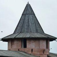 Сторожевая  башня    ... :: Galina Leskova