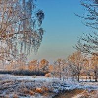 Мороз. :: Валера39 Василевский.