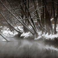 Зимнее купание... :: Андрей Войцехов