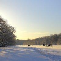 морозным утром рыбаки :: Владимир Артюхов