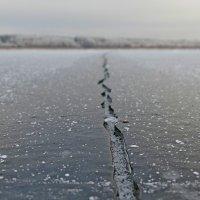 1.5 км :: Андрей Куприянов