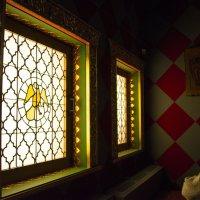 Жар-птица в окне :: Svetlana AS