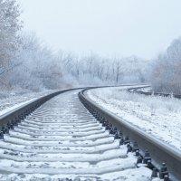 Зимняя дорога... :: Сашенька)