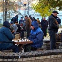 Шахматные турниры в парке :: Ростислав