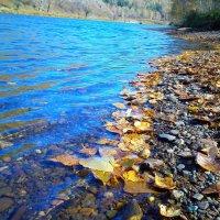 Осенний берег 2 :: оксана