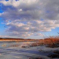 Февраль, каток на поле.. :: Антонина Гугаева