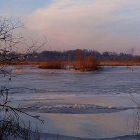 Река, закованная в лёд.. :: Антонина Гугаева