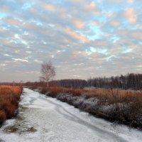 Граница зимы и осени. :: Hаталья Беклова