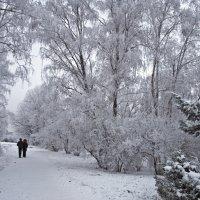 Winter :: Roman Ilnytskyi