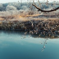 Морозное утро :: Николай Дутов