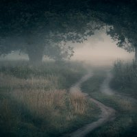 Morning mystical... :: Roman Lunin