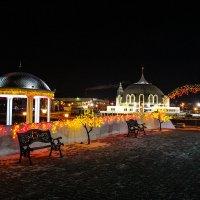Тула в ожидании новогодних чудес :: Мария Степанова
