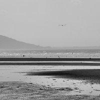 Михаил Малец - Пляж в Нормандии