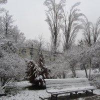 Снежный день :: Oksana KU