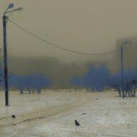 синие кусты. оттепель :: Николай Семёнов