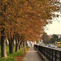 Осень :: Инна - Lasso - Ленкевич