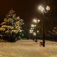 Парк :: Сергей Sha