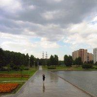 IMG_8809 - Девушка, которая не боялась дождя :: Андрей Лукьянов