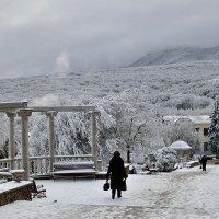 зима на юге... :: Мария Климова