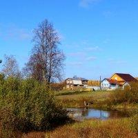 пруд в деревне :: Валентина. .