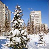 Город в котором хочется жить... :: Лидия (naum.lidiya)