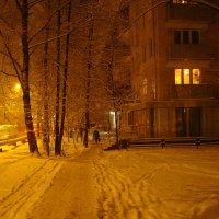 В Москве - снег (Dsc09418) :: Андрей Лукьянов