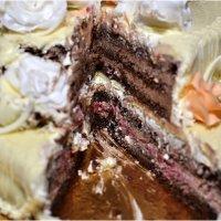 Срез торта :: Дмитрий Конев