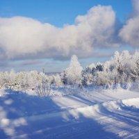 Зимний пейзаж :: Галина Подлопушная