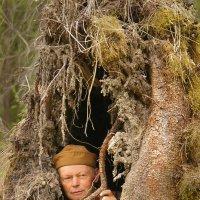 Укрытие в лесу :: Валерий Талашов