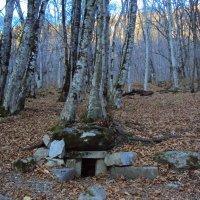 Долина дольменов на Красной поляне Сочи :: Tata Wolf