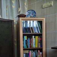 Попробовать, что ли, почитать? :: Ирина Данилова