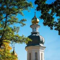 Золотое и зелёное. Ильинская церковь. :: Андрий Майковский