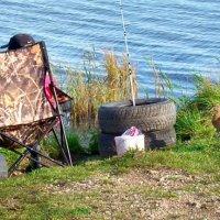 рыбалка под наблюдением :: linnud