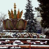"""Фонтан """"Каменный цветок"""" зимой :: Владимир Болдырев"""