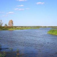 Берега великой реки :: Виктор Калабухов