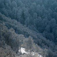Александр Поэглис - Светящиеся снежинки :: Фотоконкурс Epson