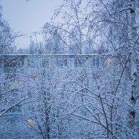 Мечтая о снеге... :: Елена Миронова