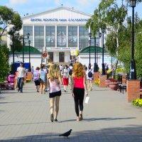 Летний день. :: Валерий Кабаков