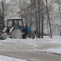 Зимние хлопоты! :: Ирина Олехнович