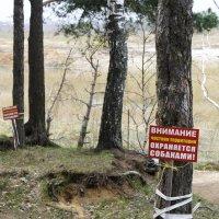 Запретная зона :: Валерий Судачок