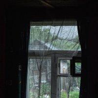 Настырно ветер в окна рвётся... :: Ирина Данилова