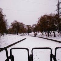 Зимняя прогулка :: Александра Гай