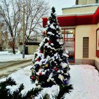 Новый год у ворот! :: Svetlana27