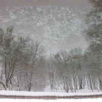 Зима!!! :: Анна Борисенко