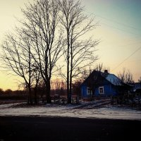 Зимняя погодка :: Елена Протас