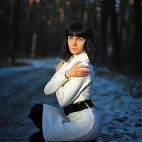 Зимние грезы.. :: Serg Y