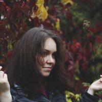 Люблю красные листья :: Klementina K