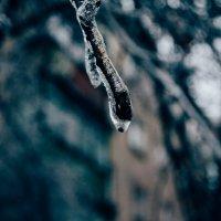 drop :: Сергей Каверин